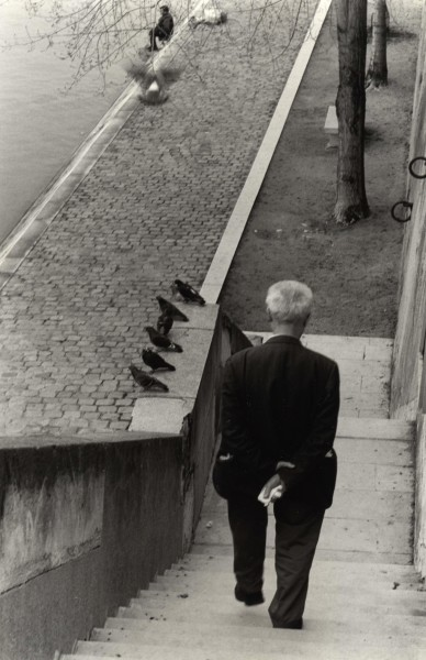Ben Asen Personal Work Photo: Black and white photo of man walking down the steps to the Seine River in Paris, France with pigeons resting on the steps.